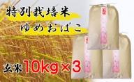【特別栽培米 炭壌米 ゆめおばこ】令和2年産 玄米 10kg×3袋(合計:30kg) 『先行予約』