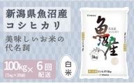 新潟魚沼産コシヒカリ 5kg×20袋 ※定期便6回 安心安全なヤマトライス H074-141