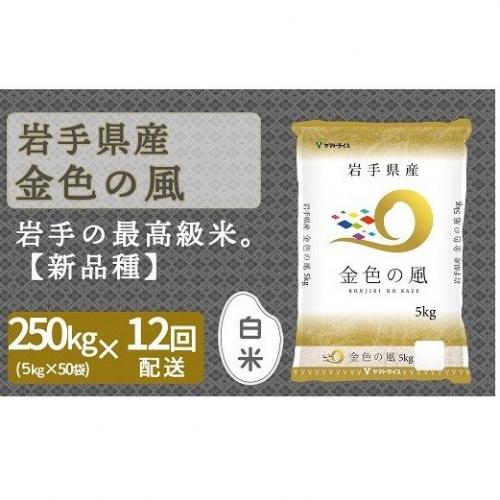 <安心安全なヤマトライス>岩手県産 金色の風5kg×50袋  ※定期便12回 H074-152