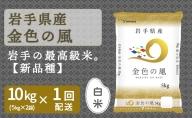 岩手県産金色の風 10kg 安心安全なヤマトライス H074-120