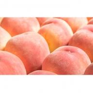 季節の桃 約5kg