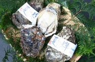 OM-28 岩牡蠣「夏輝」(約2kg)