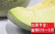 【先行予約/盆明け発送】 訳あり メロン 7.5kg程度 (緑肉4~8玉)  津軽産