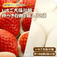 いちご大福 10個・杵つき白餅 8個入り2袋