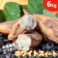【予約受付中】本場鹿児島さつまいも 【ホワイトスイート】6kg 桜山ファーム限定商品【※2021年10月上旬から発送】