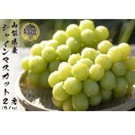 【先行予約 限定500箱】特選 日本一の葡萄の里・山梨県 シャインマスカット2房(約1kg)