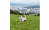 【お茶ツーリズム】エキスパート製茶工場見学(2名様分)