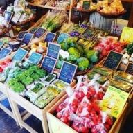 A-044 山口の新鮮野菜の定期便(年12回)
