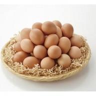 B-005 秋川牧園の卵30玉セット定期便(年12回)