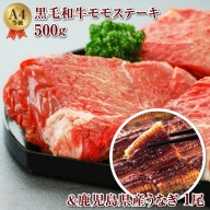 B2-2247/黒毛和牛モモステーキ500g&うなぎ1尾