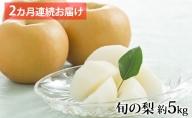 【松崎果樹園】2ヶ月連続お届け 旬の梨食べ比べ 約5kg