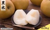 【松崎果樹園】梨「豊水」約5kg(8~10玉入)