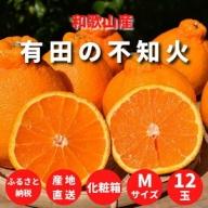 ZE6104_有田の不知火(しらぬひ) 化粧箱 12玉 Mサイズ【まごころ手選別】
