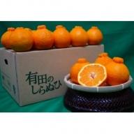 ZE6107_有田のしらぬひ 【家庭用】7.5kg 大玉 L~3Lサイズ混合