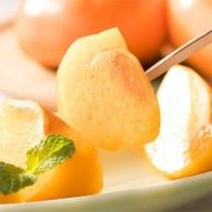 AB6186_【秋の美味】和歌山の平たねなし柿 約7.5kg (ご家庭用)