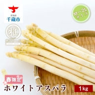 【M~2Lサイズ 約1kg】ホワイトアスパラ・北海道千歳産