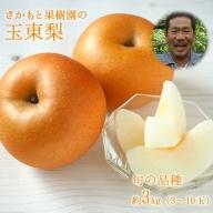 さかもと果樹園の玉東梨 約3kg (3玉-10玉前後)《8月上旬-10月上旬頃より順次出荷》熊本県玉名郡玉東町 梨 なし 果物 旬の梨