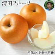 清田フルーツの豊水梨 約5kg(12-20玉前後)《8月中旬-9月中旬頃より順次出荷》 熊本県玉名郡玉東町 梨 なし 果物 フルーツ