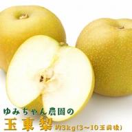 ゆみちゃん農園の玉東梨 約3kg(3~10玉前後)《8月中旬-10月上旬頃より順次出荷》 熊本県玉名郡玉東町 梨 なし 果物 フルーツ