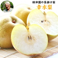 赤梨系の早生種『緑伸園』の幸水梨 期間限定 たっぷり約3kg 4-8玉前後入り《7月下旬-8月中旬頃より順次出荷》 なし 幸水 果物 スイーツ フルーツ デザート スムージー