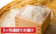 加東市のうまい米 ひのひかり 5kg×5回 計25kg【5回お届け】