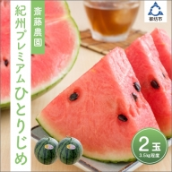 齋藤農園ブランド「ひとりじめプレミアムV」(小玉スイカ ひとりじめ) 2玉3.5kg程度