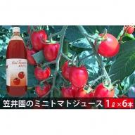 ミニトマト「アイコ」で作ったトマトジュース6本セット(ご自宅用)