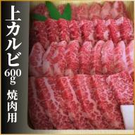 飛騨牛 上カルビ 焼肉用600g 牛肉 和牛 肉 牛肉 和牛 御中元 お中元 [Q113]