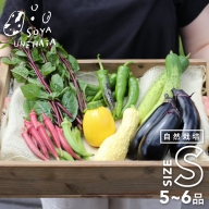 《事前予約》《期間・数量限定》野菜セット 5~6品 自然栽培 野菜BOX・Sサイズ[A0092]