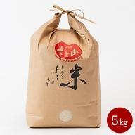 C−241.三瀬村産「コシヒカリ」5kg