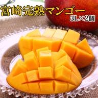 宮崎県産「完熟マンゴー」3L×2個【B424】