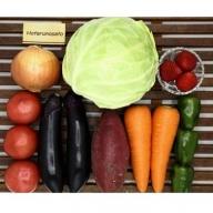 3ヶ月定期便 福津むなかたの旬(野菜7~8品+果物1品)[B6213]