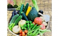 【2636-0145】【野菜セット】産地直送!新鮮とれたて旬の野菜/季節野菜 採れたて 安心 奈良県