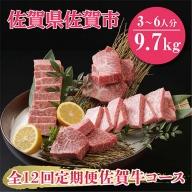 V−017.【全12回定期便】佐賀牛9.7kgコース(3~6人分)