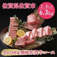 U−010.【全12回定期便】佐賀牛6.3kgコース(2~3人分)