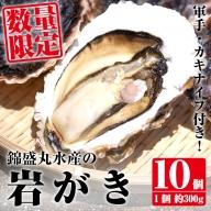 錦盛丸水産の岩がき 10個入_kinsei-307