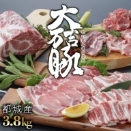 MJ-1306_都城産「大万吉豚」3.8kgセット