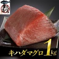 漁協直送!キハダマグロブロック(生)1kg