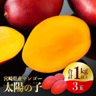 宮崎マンゴー『太陽の子』3玉(1kg以上)