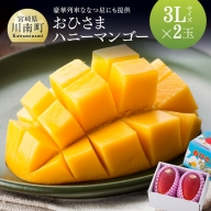 【2021年発送】おひさまハニーマンゴー 3L×2玉