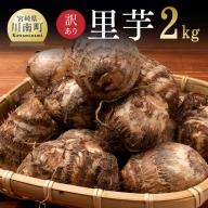 【訳あり】里芋2kg(約30個)