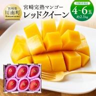 完熟マンゴー『レッドクイーン 』4玉~6玉(2000g以上)