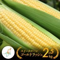 ※2021年発送※農家直送!守部さん家のスイートコーン2.5kg以上(6~8本)