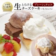 『押川春月堂本店』とろける生チーズケーキセット(プレーン&チョコ)