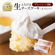 『押川春月堂本店』とろける生チーズケーキ(プレーン2個)