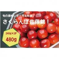 A-139【プレゼントに人気!】高級感溢れるさくらんぼ 佐藤錦 秀L 480g(240gダイヤ詰×2パック)