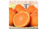 G6036_紀州有田産不知火(しらぬひ) 約5kg