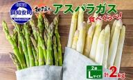 アスパラガス2色食べ比べセット計2kg≪北海道ようてい産≫