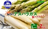 アスパラガス2色食べ比べセットLサイズ計2kg≪北海道ようてい産≫