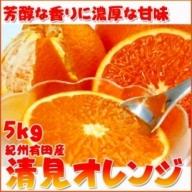 G6025_とにかくジューシー清見オレンジ 5kg